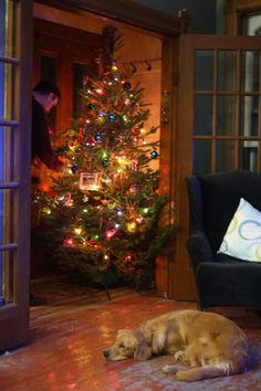 SEASONAL – CHRISTMAS – the magic of the holiday makes another appearance in a brilliant presentation of colors.