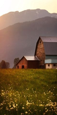 A Place in the Country. A Barn, a meadow, fresh country air. It's perfect. Country Barns, Country Life, Country Living, Country Roads, Country Charm, Farm Barn, Old Farm, Cottage, Farms Living