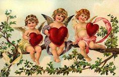 Valentijn - Elfen & Boeken