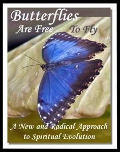 Butterflies are Free to Fly : A New and Radical Approach to Spiritual Evolution  This is an interesting book using Quantum Physics as a basis for our existence.....a very interesting read!