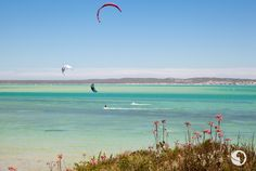 Go Kite Surfing: Our action man knows a thing or two about kite surfing, so we headed up the west coast to Langebaan an easy one-hour drive from Cape T. Snowboard Girl, Skateboard Girl, Travel Humor, Seaside Towns, Big Waves, Surf Girls, Kitesurfing, Cape Town, Surfboard