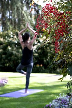 Summer at Beau-Rivage Palace ( Yoga) Hotel Beau Rivage, Palace, Aromatherapy, Fitness, Yoga, Workout, Summer, Summer Time, Work Out