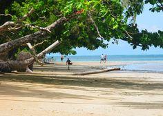 BAHIA-Boipeba (Praia de Tassimirim)