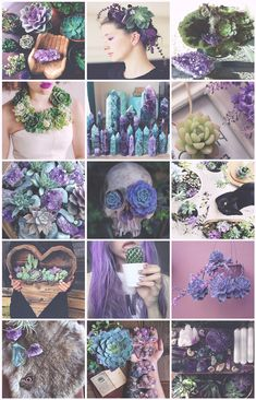 Succulents Witch aesthetic