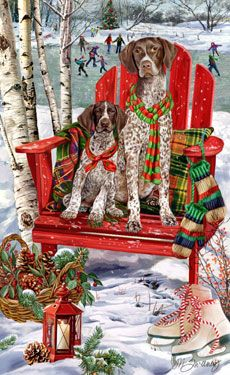 German Shorthair Pointers how I love you.