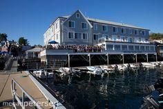 boston yacht club wedding | megan petersen photography