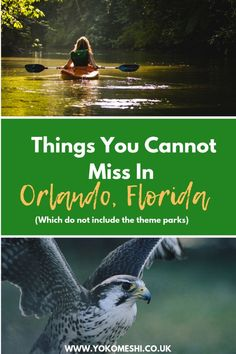 Fun things to do in Orlando besides theme park. Looking for things to do in Orlando which do not include Disney World? Check out this guide which includes nature spots, outdoor activities and great things to do in Orlando, Florida. Usa Travel Guide, Travel Blog, Travel Usa, Travel Tips, Florida Vacation, Florida Travel, Florida Food, Florida City, Central Florida