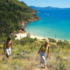 Bushwalking in the Whitsunday Islands