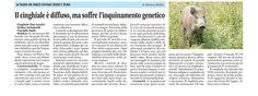 Articolo di Adriana Robba (La Guida 4 luglio 2014)