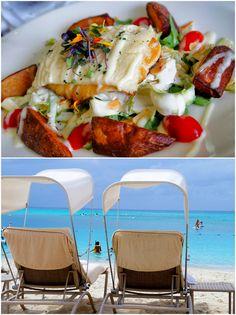 Ilhas Cayman: um pedaço do Caribe exclusivo, tranquilo e com ótima comida