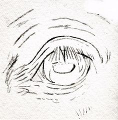 How Can You Draw Horse Eyes With Colored Pencils?: Draw a Horse Eye - Preliminary Sketching