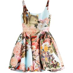 Mary Katrantzou Tivolio Printed Dress (129.930 RUB) ❤ liked on Polyvore featuring dresses, vestido, floral, mary katrantzou, floral dresses, balloon dress, graphic dress, mary katrantzou dress and floral design dresses