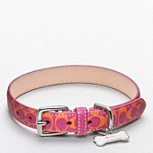 Love this orange and magenta Coach collar! Missy would look smashing in it.