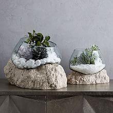 Planters & Terrariums   west elm