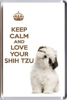 A fridge magnet with a picture of a cute Shih Tzu with the words KEEP CALM AND LOVE YOUR SHIH TZU from our KEEP CALM and CARRY ON range. A unique Birthday or Christmas stocking filler gift idea for a dog lover! Yummy Grandmummy
