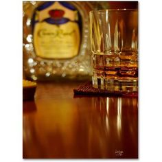 Trademark Fine Art Whiskey for the Soul Canvas Art by Lois Bryan, 14x19, Multicolor