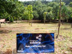 ¡Cada vez que miremos los árboles plantados y esta placa, recordaremos este bonito momento. Solidaria trasciende y deja huella en el mundo! #MDD2014
