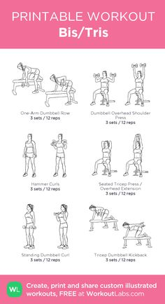 Bis/Tris · WorkoutLabs Fit – Home Workouts Upper Body Workout Gym, Band Workout, Triceps Workout, Leg Strength Workout, Crossfit Leg Workout, Arm And Leg Workout, Inner Thight Workout, Kettlebell Arm Workout, Chest And Tricep Workout