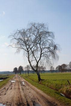 Nederland, Overrijssel