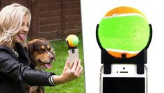 Buy Pet Selfie Device - 1 or 2 for just £6.99 Take great photos of your best furry friend with the Pet Selfie Device      Squeeze the tennis ball to capture the attention of your pet and take great selfies.      After you are finished taking photos, detach the tennis ball and reward your dog      Dogs will probably stare at the ball anyway, but the squeak will attract the gaze of your cat    ...