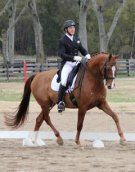 Beautiful imported KWPN gelding by Gribaldi. Competed successfully through Grand Prix with scores in the mid 60's. Very well schooled, perfect for any ambitious rider looking to move up the levels and earn their medals. Would be great candidate for NAJYRC or Brentina Cup. $85,000