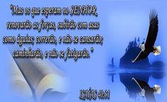 Voe mais Alto com Deus - Você Nasceu para Voar Alto  http://www.aprendizdecabeleireira.com/2014/11/voe-mais-alto-com-deus-voce-nasceu-para.html