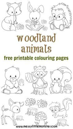 Free printable woodland animal coloring pages