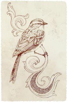Bird drawing!