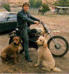 Patrick Swayze Lisa Niemi, Patrick Swazey, Houston, Patrick Wayne, Celebrity Dogs, Rhodesian Ridgeback, Dirty Dancing, Tough Guy, Dog Photos