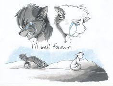 THIS KILLS ME!!! Why couldn't Rock let Jayfeather stay?