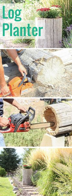 Add instant character to your garden or patio by making your own log planter. It's an easy project to customize for your space, it adds a great natural touch and it uses something you may already have on hand in your yard! For added bonus, it can also be used indoors, too. http://www.ehow.com/how_7668133_make-log-planter.html?utm_source=pinterest.com&utm_medium=referral&utm_content=freestyle&utm_campaign=fanpage