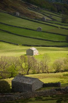 Barns in the meadows in Swaledale, England
