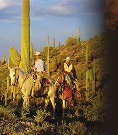 wickenburg, AZ.. horseback riding in the desert