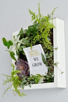Bepflanzte Bilder für die Wand, idee, together we grow, quote, sprüche, wall, flowers, herbs hanging