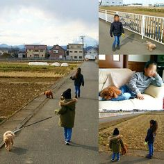 . 土日で孫が泊まりに来て 一緒にワンコの散歩🐩🐩 . 今日は富士山🗻の山頂は ☁で見えません~😢 . 散歩の途中 後から眺めて… 何だか孫達も大きくなって ワンコ達の世話も 出来る様になってる~(笑) ちょっと前の散歩は ワンコ片手に孫の手を繋いで 大変だったけど 子供の成長は早い~😓 . . 帰宅するど モコも上の孫にべったり 一緒にDVD観賞 呼んでも知らん顔~(笑) のんびり休日を過ごしました👍🙌 . .  #トイプードル #プードル #愛犬 #いぬ #さんぽ #富士山 #散歩道 #たんぼ #孫 #小学生 #幼稚園 #dvd鑑賞 #べったり #poodle #toypoodle #grandson #walk #walking #fuji #mountain #instatoypoodle #instalike #instagood #instalife #instagram #instagrandson #insta