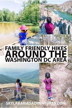 Washington Dc With Kids, Washington Dc Area, Washington Dc Travel, Family Road Trips, Road Trip Usa, Travel With Kids, Family Travel, Assateague Island National Seashore, Roosevelt Island