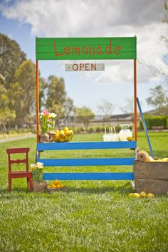lemonade stand! what kid doesn't want to do this over the summer?
