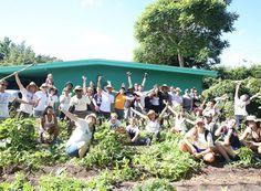 Fleet Farming - gesunde Ernte aus dem Vorgarten. So geht urbanes Gärtnern 2.0! #emsa #emsagmbh #fleetfarming #nachhaltig #umweltbewusstsein #garten #gartenwerkzeug #ernte #pflege #pflanzen #gemuese #urban
