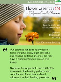 Flower Essences 101 - A Safe and Gentle Holistic Remedy for the Whole Family