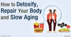 Autophagy, the processes by which your body cleans out various debris, plays a key role in your body's ability to detoxify, repair, and regenerate itself.  http://fitness.mercola.com/sites/fitness/archive/2016/03/11/autophagy.aspx