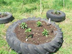 tractor tyre garden