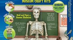 Smithsonian Human Skeleton Casting Kit First, mix the PerfectCast mold mix in the 'mix and pour' bag and pour it into the molds. Smithsonian products bring fun and learning together by utilizing vibrant imagery and unique and relevant subject matter in a hands-on toy that truly engages a child.