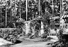AK Beelitz Mark Heilstätten Freilichtbühne 1965   eBay