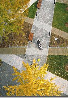 montreal paving pattern