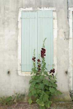 {hollyhocks} couleurs locales by wood & wool stool... - love colour for kids playhouse