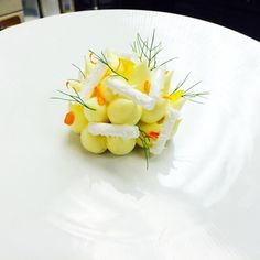 https://flic.kr/p/ovgtJk | Pre dessert for tonight !! Passion fruit Cremeux, tropical fruit , coconut sorbet, passion fruit cloud , coconut meringue #theartofplating #chefstalk