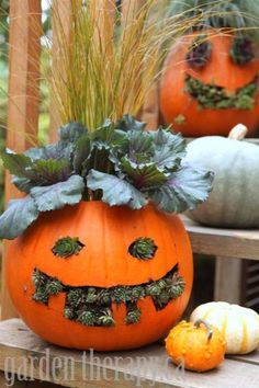 Step by step instructions to make Jack o Planterns or Jack-o-Lantern Planters from a pumpkin and some garden plants! Holidays Halloween, Halloween Diy, Halloween Decorations, Kids Holidays, Autumn Decorations, Halloween Designs, Haunted Halloween, Halloween Horror, Halloween 2019