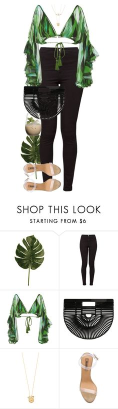 """""""Whenever a man does a thoroughly stupid thing, it is always from the noblest motives."""" by quiche ❤ liked on Polyvore featuring American Apparel, Água de Coco, Cult Gaia, Tai, adidas, Jennifer Zeuner and Margarita"""