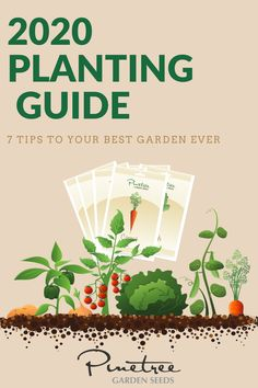 Whether this is your first time planting a home garden or you are an experienced gardener taking a fresh approach to a long-established plot, a good garden plan sets you up for a great harvest.