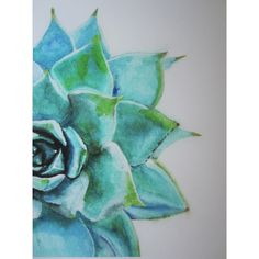Blue Green Succulent Watercolor Print ($48) ❤ liked on Polyvore featuring home, home decor, wall art, watercolor wall art, aqua home decor, succulent wall art and aqua home accessories
